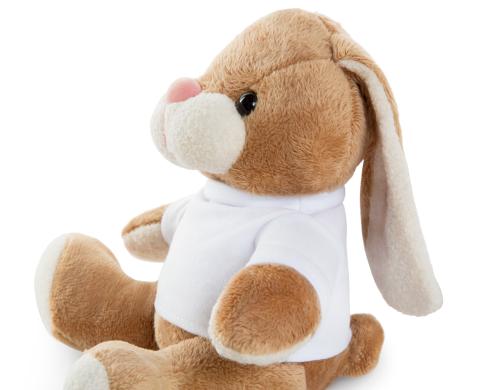 Rabbit Bunny